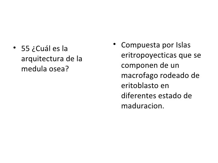 <ul><li>55 ¿Cuál es la arquitectura de la medula osea? </li></ul><ul><li>Compuesta por Islas eritropoyecticas que se compo...