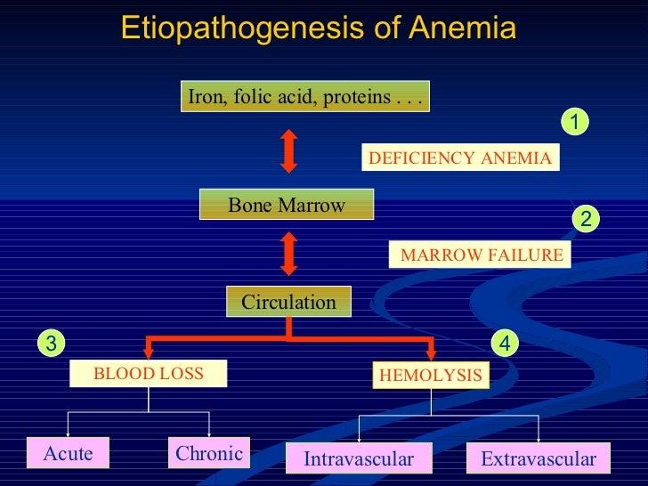 Etiopathogenesis of Anemia Iron, folic acid, proteins . . . Bone Marrow DEFICIENCY ANEMIA MARROW FAILURE Circulation BLOOD...