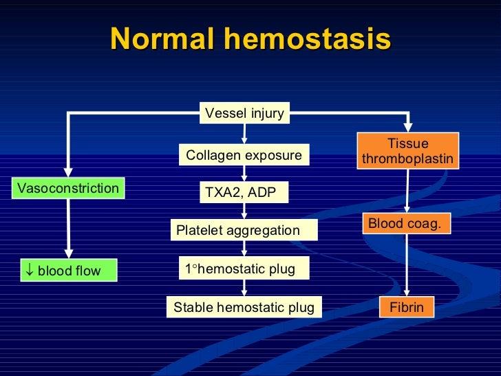 Normal hemostasis Vessel injury Collagen exposure TXA2, ADP Platelet aggregation 1  hemostatic plug Stable hemostatic plu...
