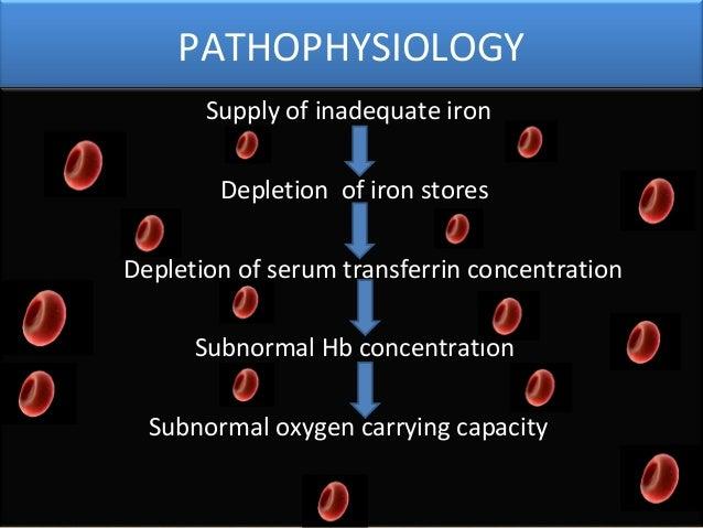 hematology ppt