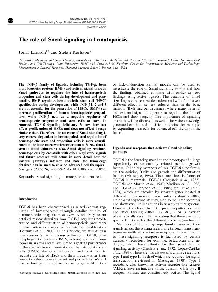 Oncogene (2005) 24, 5676–5692       & 2005 Nature Publishing Group All rights reserved 0950-9232/05 $30.00                ...