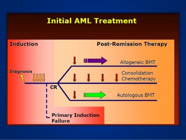 Hematopoietic stem cell transplantation for patients with AML