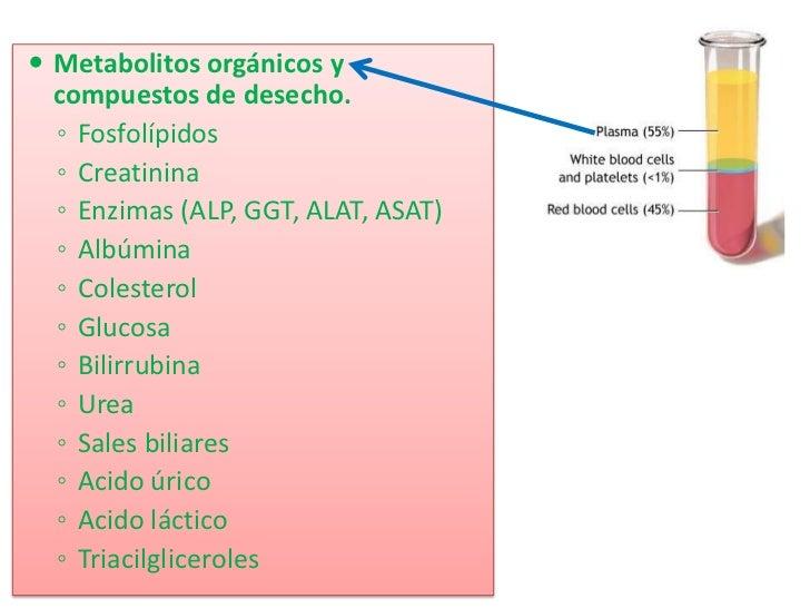 <ul><li>Metabolitos orgánicos y compuestos de desecho.