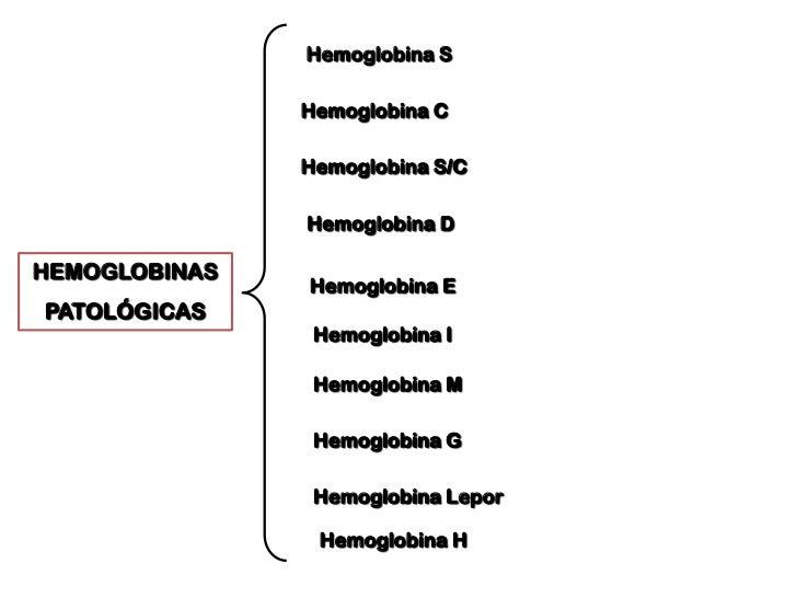 Hematopoyesis<br />