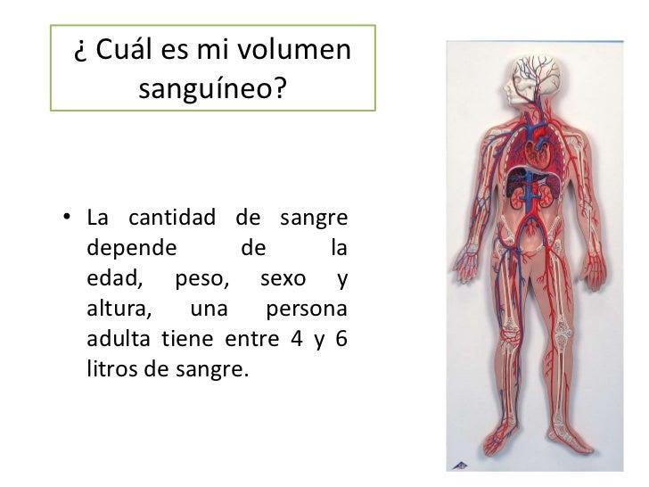 ¿ Cuál es mi volumen sanguíneo?<br />La cantidad de sangre  depende de la edad, peso, sexo y altura, una persona adulta ti...