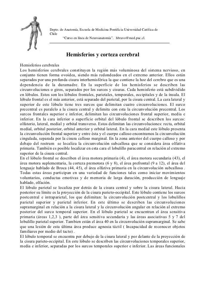 Depto. de Anatomía, Escuela de Medicina Pontificia Universidad Católica de                  Chile                         ...