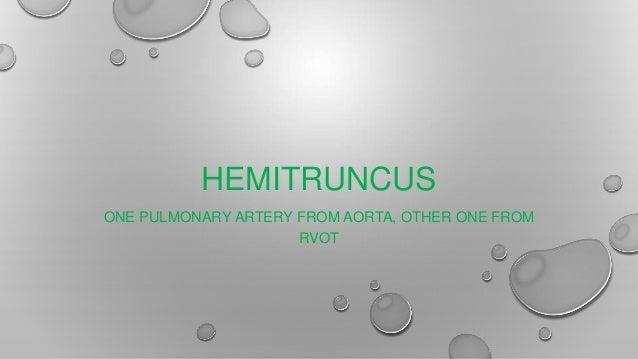 HEMITRUNCUS ONE PULMONARY ARTERY FROM AORTA, OTHER ONE FROM RVOT