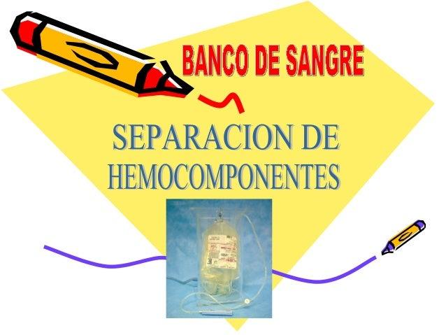 OBJETIVOS   Los objetivos principales de los procedimientos de extracción, preparación, conservación y transporte de la s...