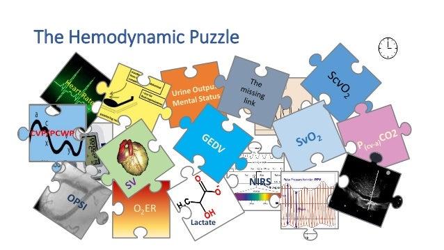 The Hemodynamic Puzzle O2ER NIRS SVV Lactate