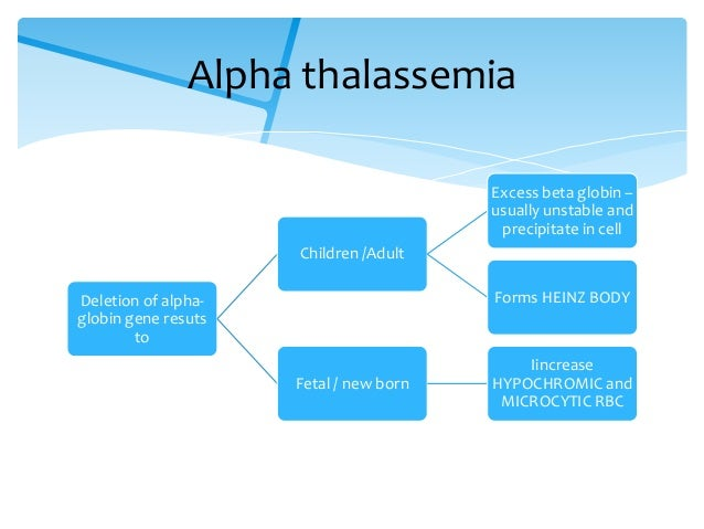 thalassemia disorders Thalassemia — learn more about symptoms, causes, treatment of this inherited  blood disorder that usually shows up before 2 years of age.