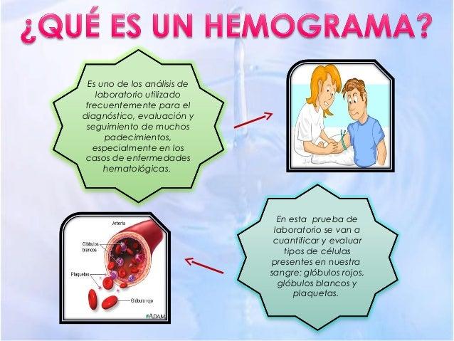 Hemograma   ppt Slide 3
