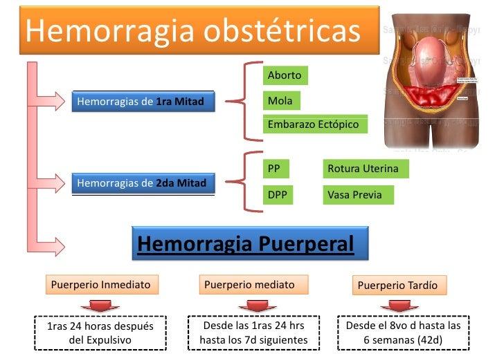 Hemorragia obstétricas                                            Aborto      Hemorragias de 1ra Mitad              Mola  ...
