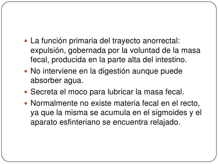 La función primaria del trayecto anorrectal: expulsión, gobernada por la voluntad de la masa fecal, producida en la parte ...