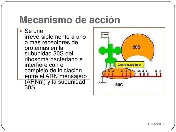 Mecanismo de acción<br />10/20/2010<br />Se une irreversiblemente a uno o más receptores de proteínas en la subunidad 30S ...