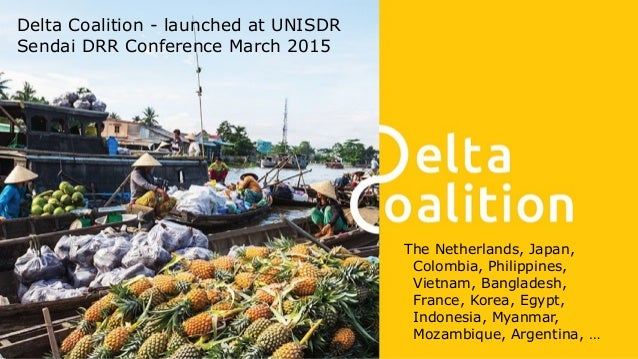 Preparedness Resilient basins Resilient cities