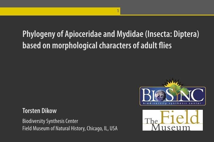 1Phylogeny of Apioceridae and Mydidae (Insecta: Diptera)based on morphological characters of adult fliesTorsten DikowBiodi...