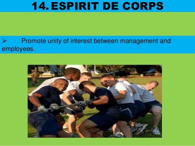 Henri fayol 14 principles with amendments(1)