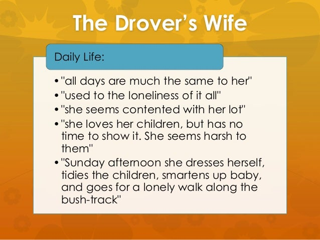 the drovers darling analysis