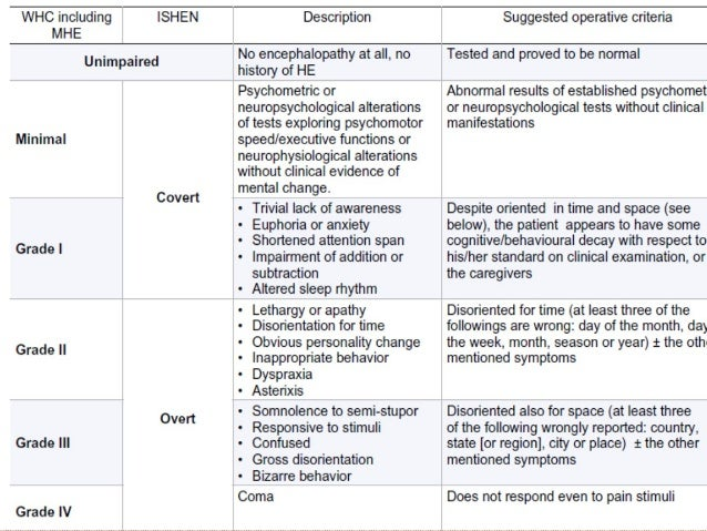 example of diet menu for hepathic encephalopathy
