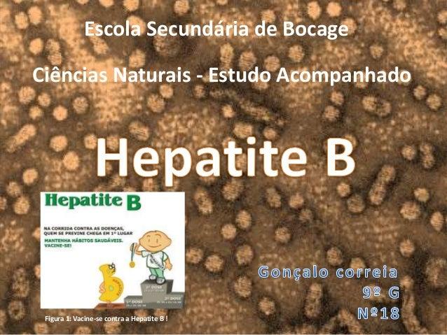 Escola Secundária de Bocage Ciências Naturais - Estudo Acompanhado Figura 1: Vacine-se contra a Hepatite B !