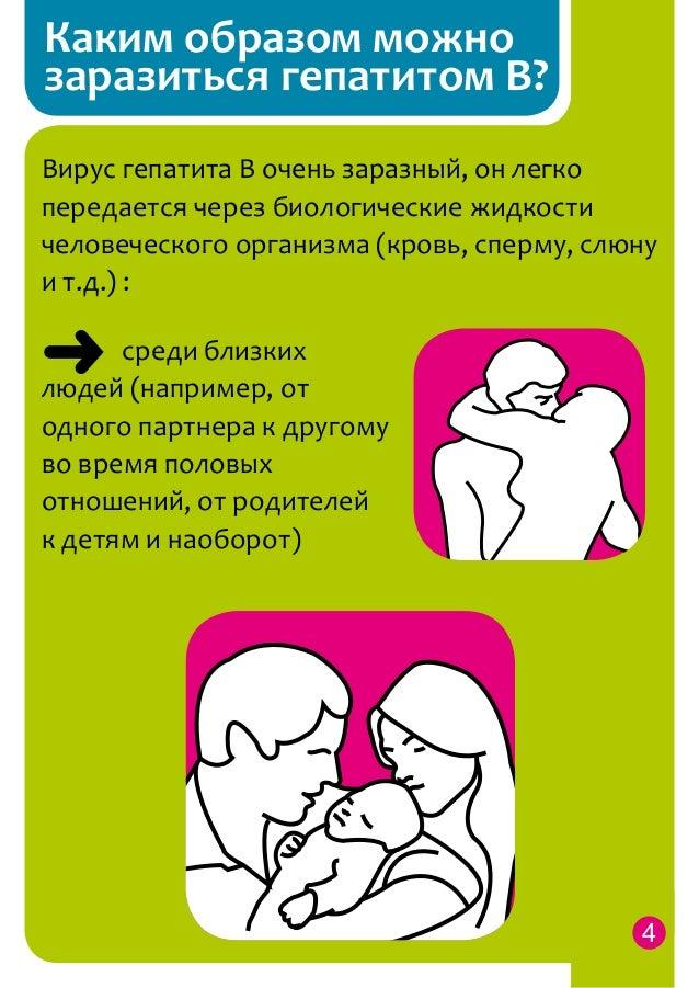 От пяти до семи дней, однако, болезнь может проявиться внезапно, и может случиться так, что вполне здоровая на вид собака через 24 часа станет очень больной.