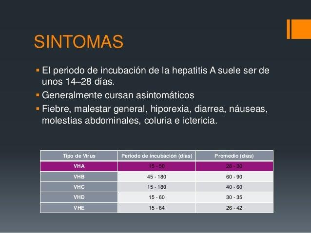 Hepatitis - Periodo finestra hcv ...