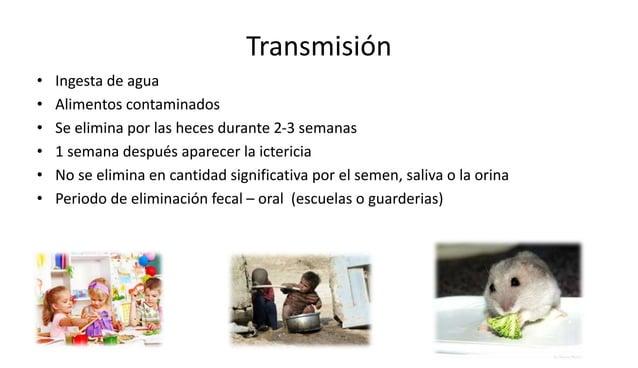 Medidas para su prevención y tratamiento  1. Medidas higiénicas  2. Inmunización pacientes con alto riesgo(anciano- muy jó...