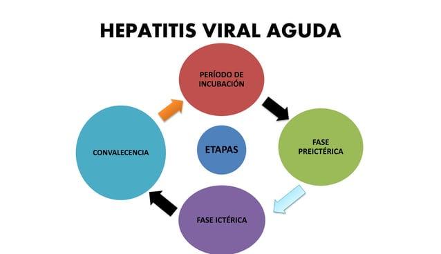 • Enfermedad suele ser leve o asintomática en niños  • Las formas más graves de infección afectan a Adultos