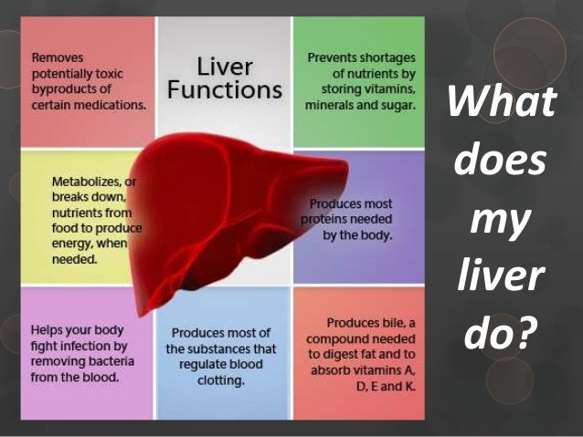 Chronic Liver Disease Foundation - CLDF