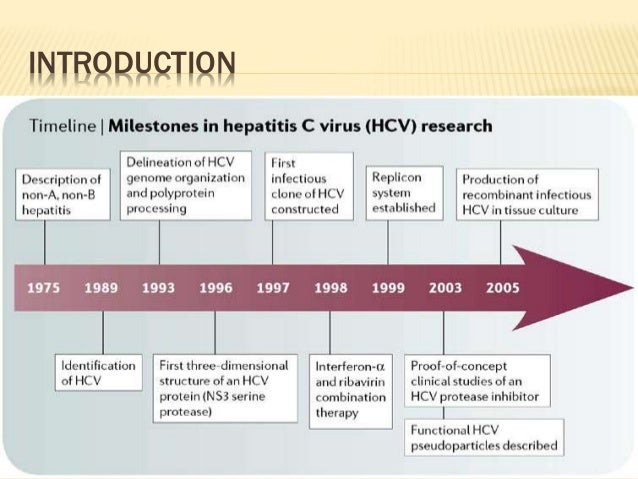 epidemiology paper hepatitis b Hepatitis research papers report that the disease can come in the forms of hepatitis a, hepatitis b or hepatitis c get research paper relief at paper masters.