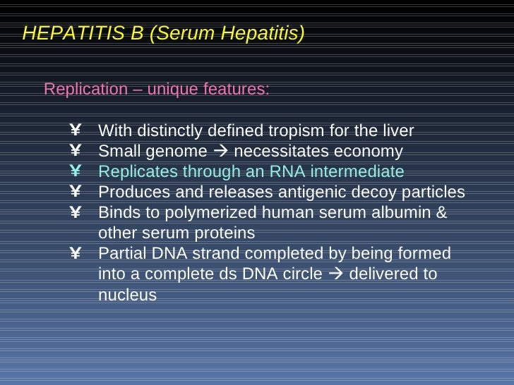 the main features of hepatitis The main features of the hepatitis c multiplication cycle are summarized by the figure 1 schematic the virion envelope includes two viral glycoproteins, e1 and e2.