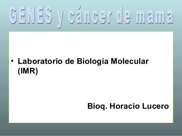 • Laboratorio de Biología Molecular  (IMR)                   Bioq. Horacio Lucero