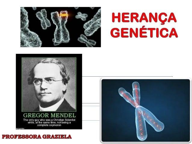 Herança GenéticaHerança Genética  O estudo da genética começou no século XIX, com experimentos feitos pelo monge austríac...