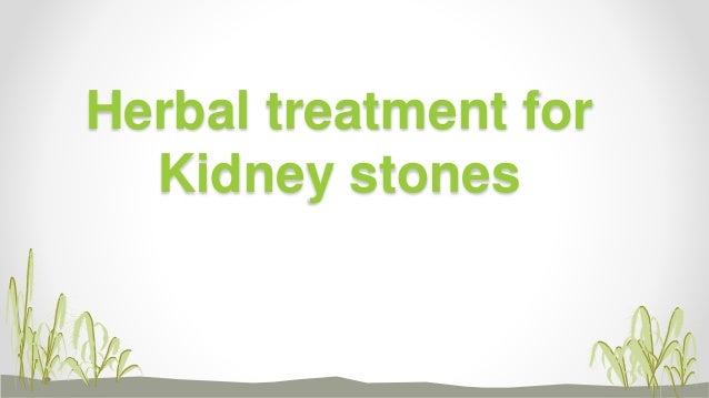 Herbal treatment for kidney stones