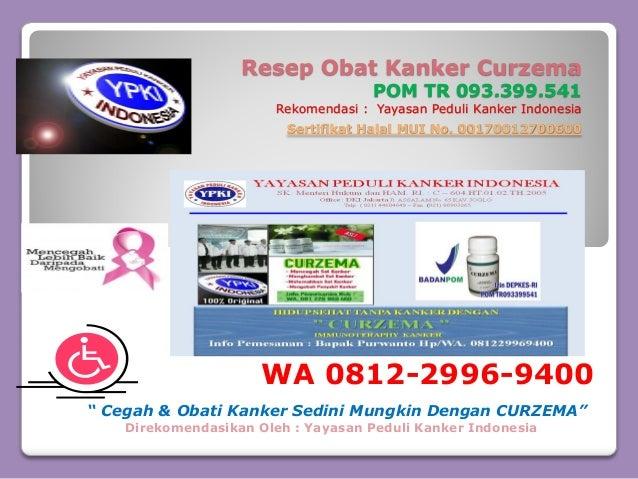 WA 0812-2996-9400, Obat Kanker Payudara Tanpa Operasi ...