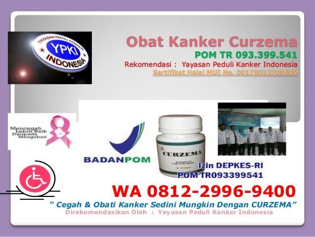 Konsultasi, CALL/ WA 0812-2996-9400, Obat Alami Kanker ...