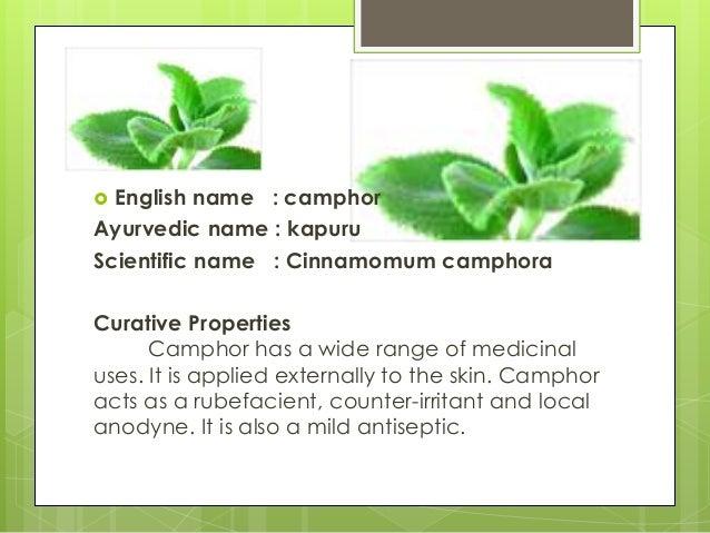 Herbal Plant Presentation