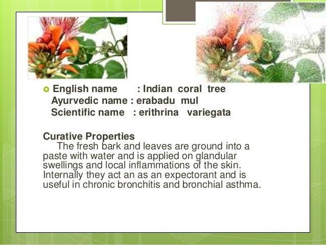 Herbalplantpresentation