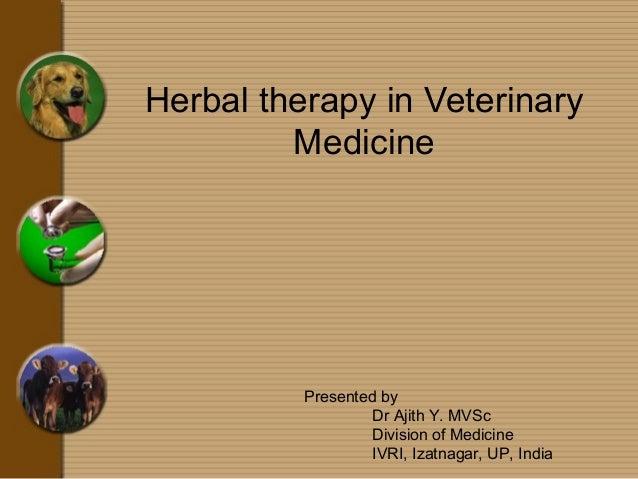Herbal therapy in veterinary Medicine