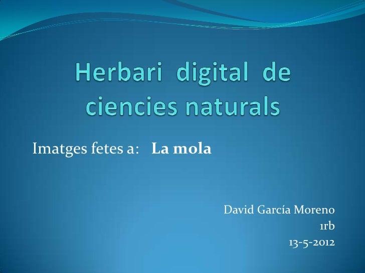 Imatges fetes a: La mola                           David García Moreno                                             1rb    ...