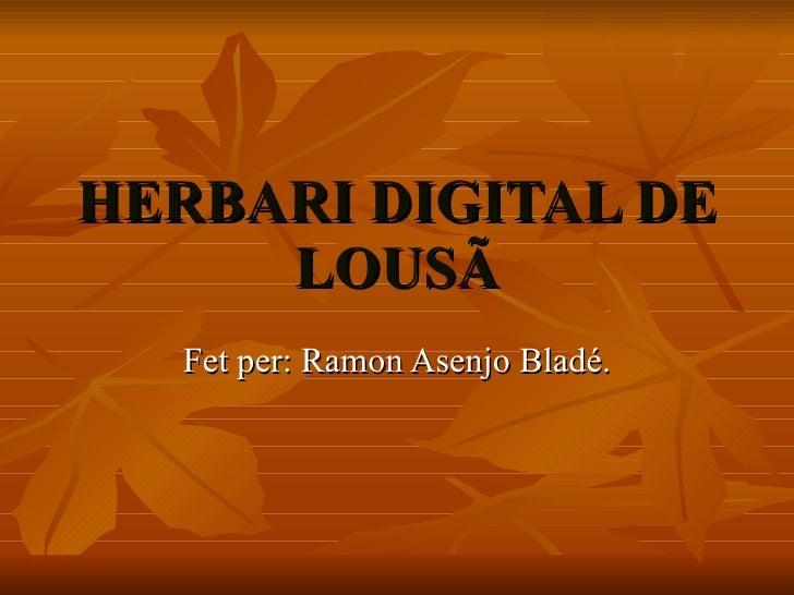 HERBARI DIGITAL DE LOUSÃ Fet per: Ramon Asenjo Bladé.