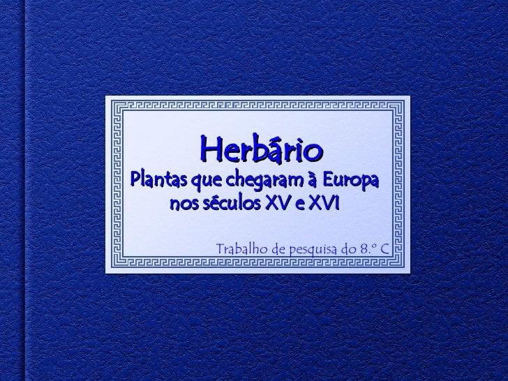 Herbário Trabalho de pesquisa do 8.º C Plantas que chegaram à Europa nos séculos XV e XVI