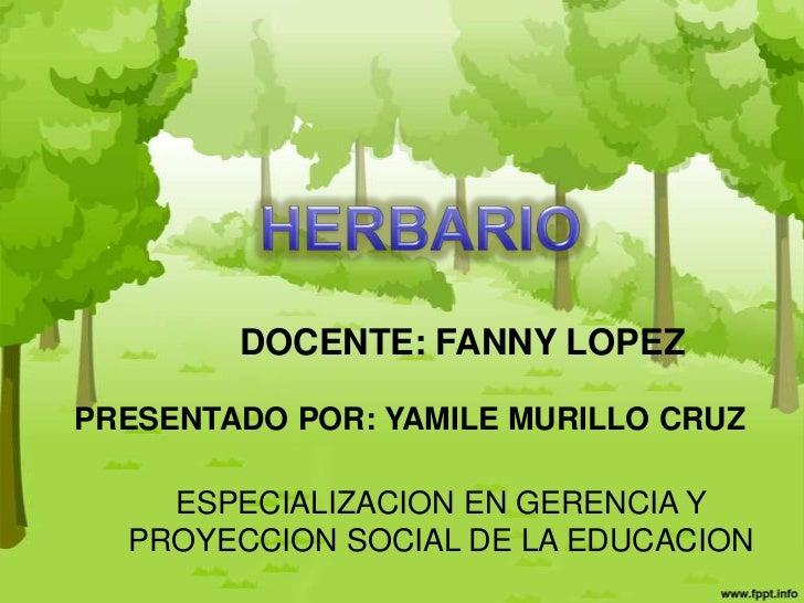 DOCENTE: FANNY LOPEZPRESENTADO POR: YAMILE MURILLO CRUZ    ESPECIALIZACION EN GERENCIA Y  PROYECCION SOCIAL DE LA EDUCACION