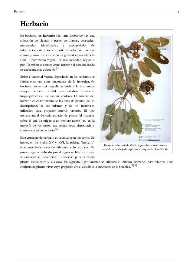 Herbario for Botanica general pdf
