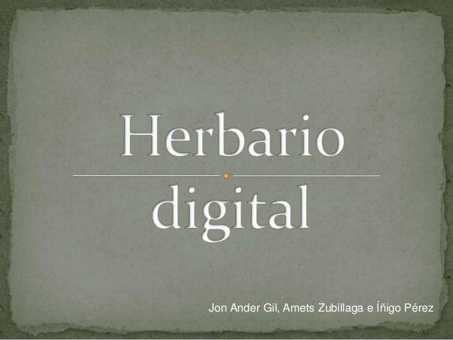 Jon Ander Gil, Amets Zubillaga e Íñigo Pérez