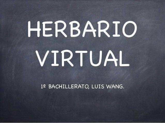 HERBARIO VIRTUAL 1º BACHILLERATO, LUIS WANG.