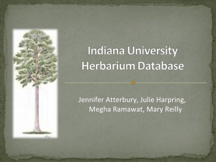 Jennifer Atterbury, Julie Harpring, Megha Ramawat, Mary Reilly