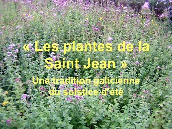 «Lesplantesdela   SaintJean» Unetraditiongalicienne    dusolsticed'été