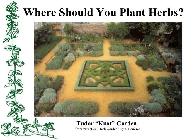 Herb gardening in the low desert for Knot garden designs herbs