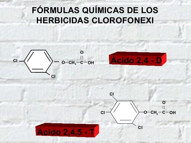 TOXICOCINÉTICA DE LOS HERBICIDAS CLOROFENOXI DIGESTIVA DÉRMICA (ESCASA) Vías de absorción